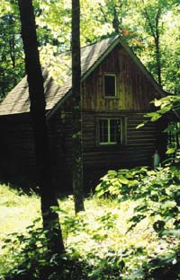 "My son, Bill Spaulding's hunting ""shack"" sits right in the middle of white oaks, which produce ""grain from trees,"" as some Indian tribes refer to acorns, and also lure big deer, which come to feed"
