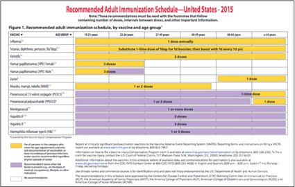 Adult dog schedule vaccination