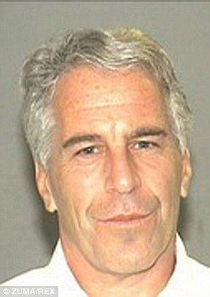 Young: Virginia Roberts is currently in the middle of a high-profile lawsuit against Epstein (pictured)