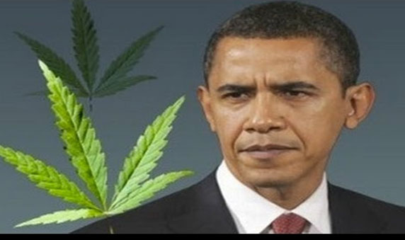 Obama Throwing Medical Marijuana Patients Into Federal Prison at Alarming Rate