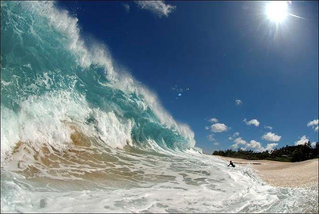 Splash - stunning shot - Clark Little/SWNS